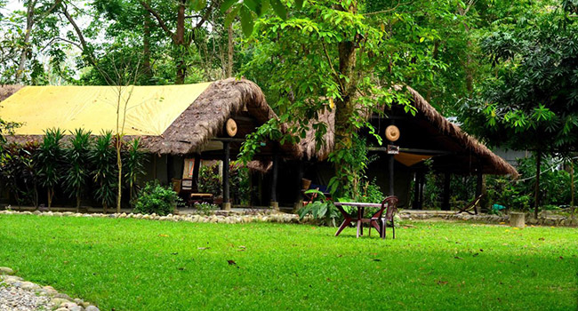 Nameri Eco Camp- Assam