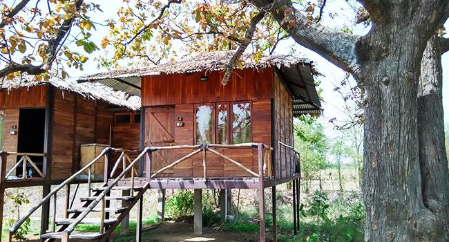 Tribal Camp- Madhya Pradesh